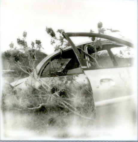 BW Car